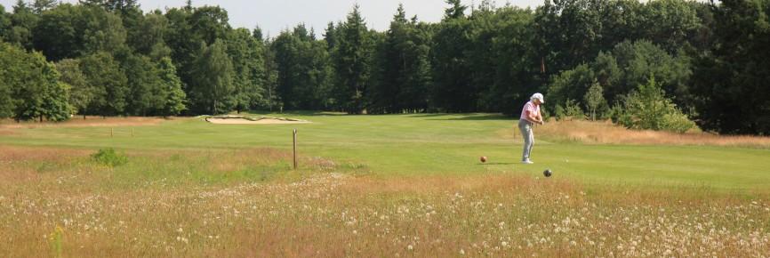 Jol Golf Design