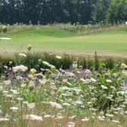 Hotel, wellness, restaurant en golfbaan op één resort